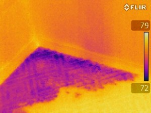 thermal imaging detected Leaking shower pan