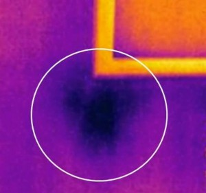 thermal imaging detects heat anomalies - moisture damage